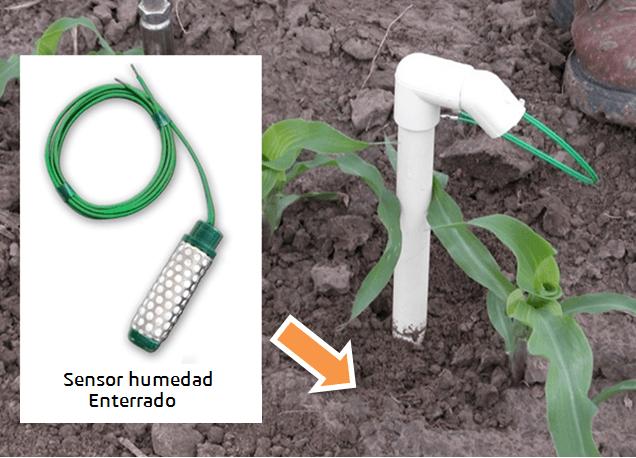 humedad-cultivos